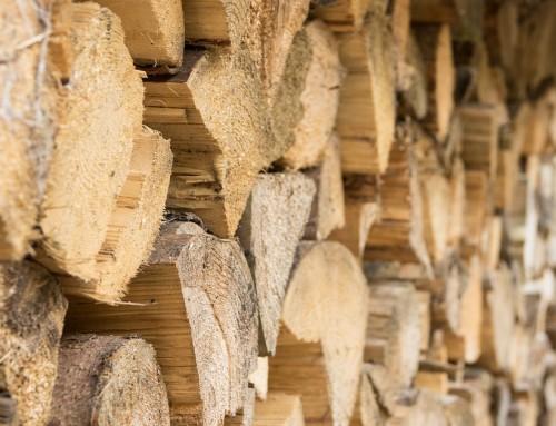 Au revoir maison en béton, vive la maison en bois !