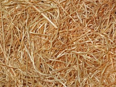 laine de bois