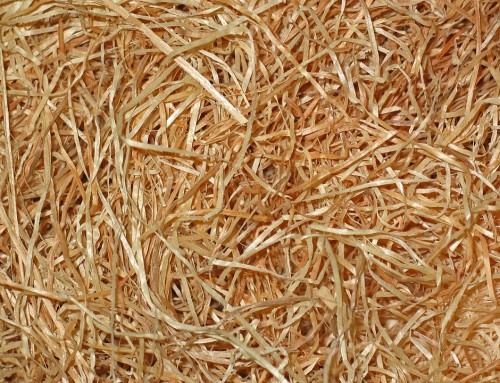 Quels avantages pour la laine de bois ?