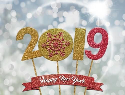Petite Maison Bois vous souhaite une excellente année 2019