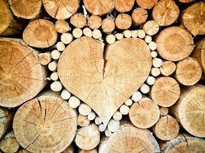avantages du bois
