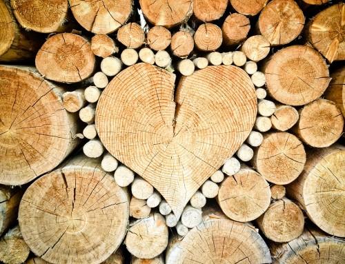 3 avantages du bois