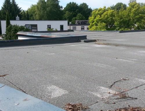 La maison à toit plat : un concept qui séduit !