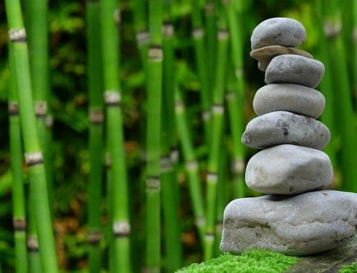 3 astuces pour rendre un jardin Feng Shui