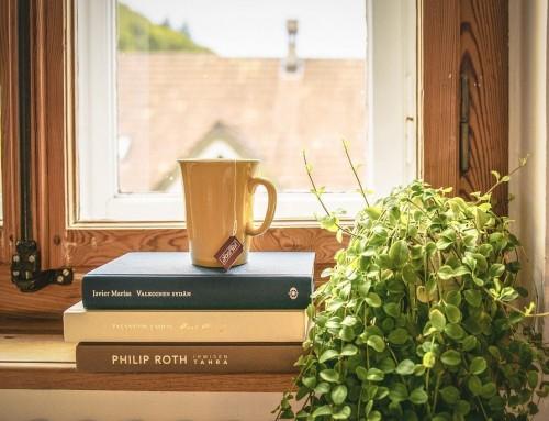 5 idées reçues sur la fenêtre bois